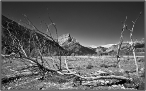 Anderson Peak Valley View, Waterton National Park, Alberta, Canada