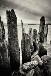 Lake Pilings