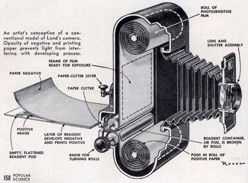 Polaroid Roll-Film Camera