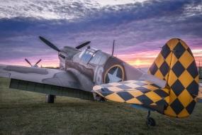Curtiss P-40 warchalk, Oshkosh 2016
