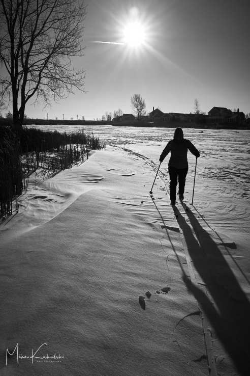 XC Skiing on Frozen Lake
